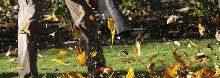 dmuchawa do liści